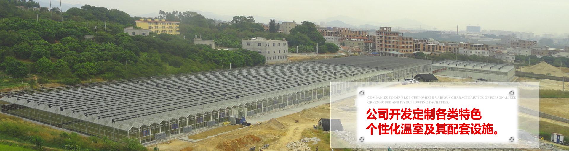 温室设计制造