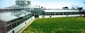 德国援助长江防护林项目宜昌林科所多边体温室