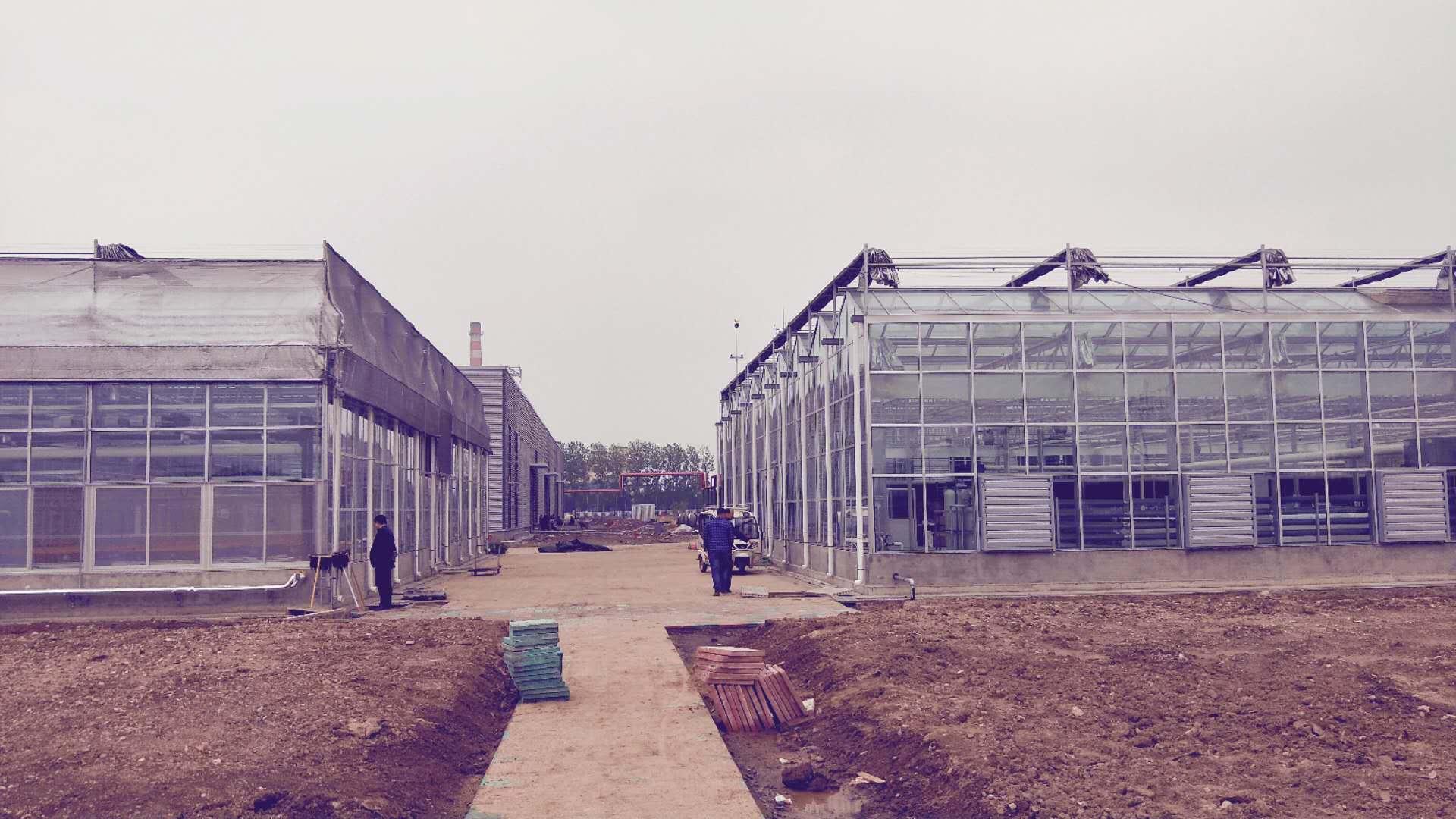 中化农业(临沂)研发中心