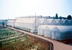 湖南省汨罗市省级农业高科技示范基地