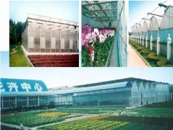 武汉市花卉研究开发中心