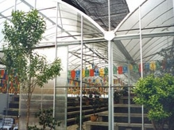 西安市万达盆景展示温室