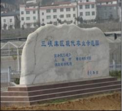 萧氏茶叶集团有限公司