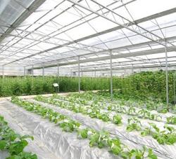 温室大棚新技术