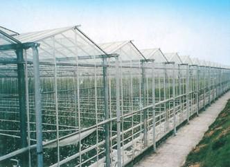 LWBRRV96型文洛式多屋面玻璃温室