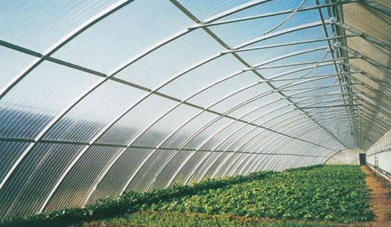 WBD—7型玻璃单坡温室