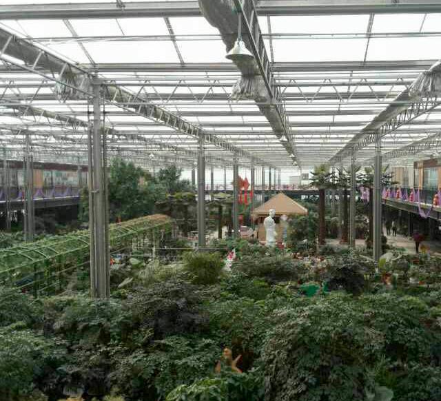 玻璃温室花园中心