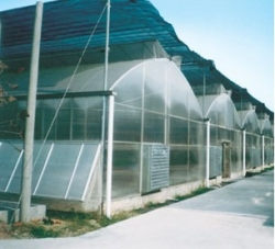 LWPSG—8型PC板薄膜组合温室