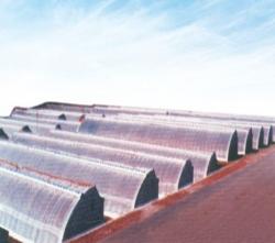 WSRG—8型薄膜日光温室