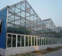 WER-11型玻璃温室
